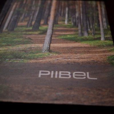 EST Bible Online - Eestikeelne Piibel
